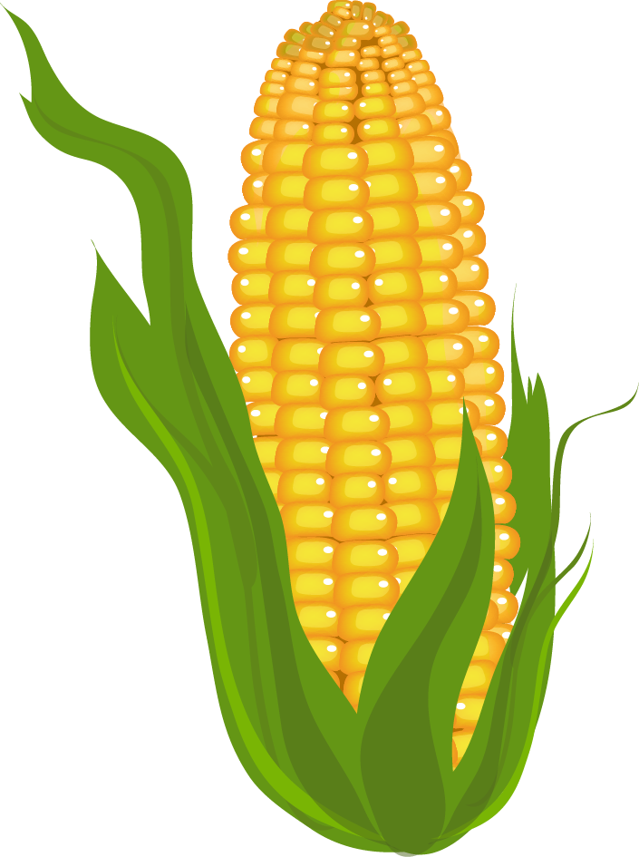 mexican corn on the cob png