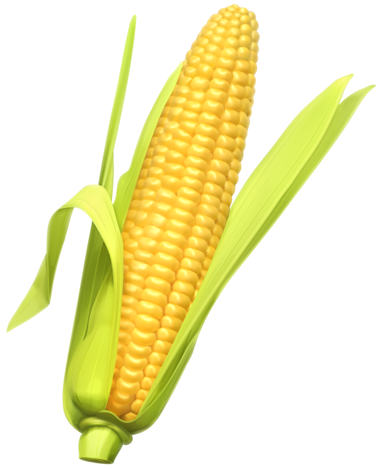 Corn clipart small. Dog svg freeuse library
