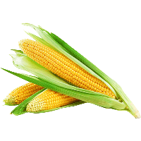 corn png grill