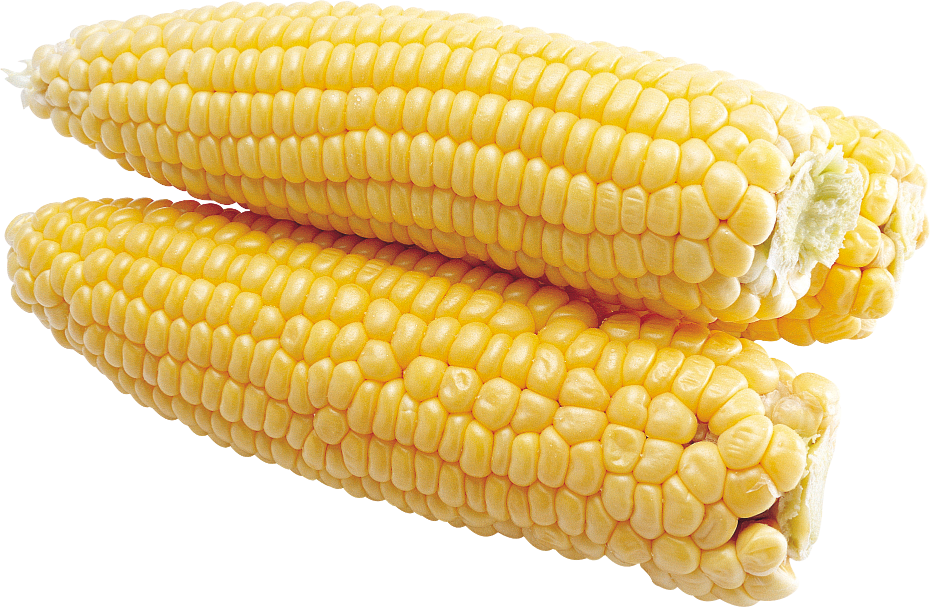 Corn png cooked. Images download yellow image