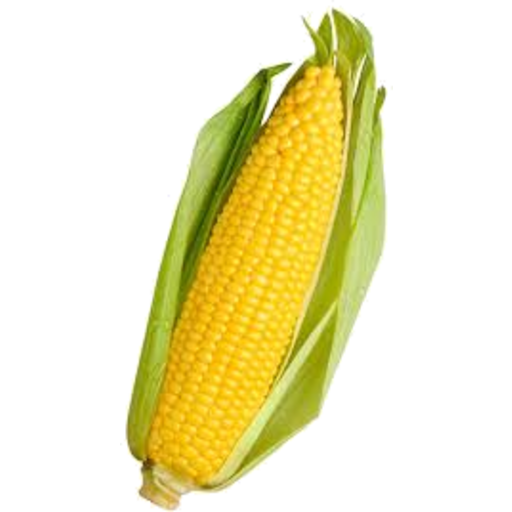 Corn png happy. Sweet fruit vegetable delivery