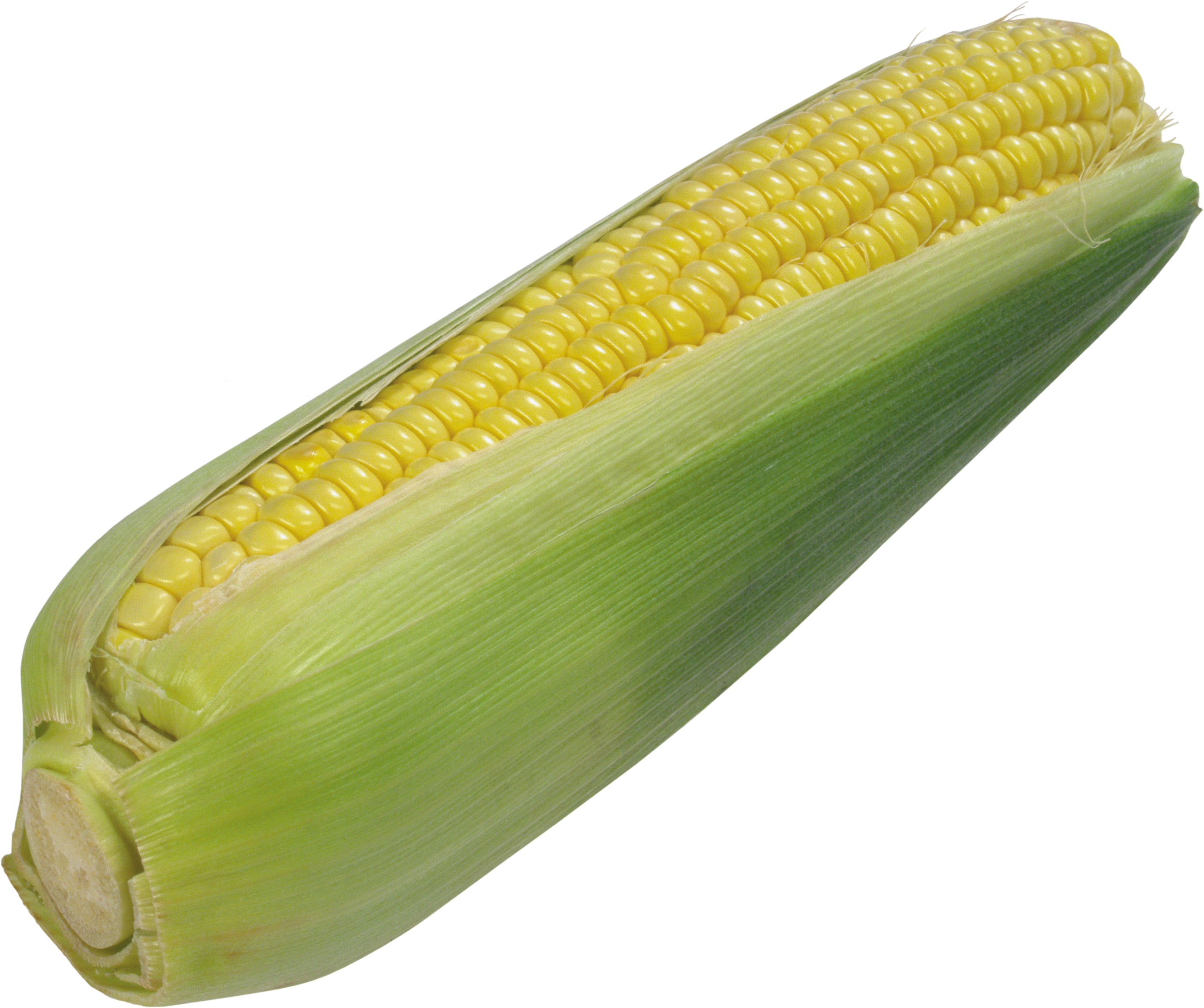 Corn png cooked. Image purepng free transparent
