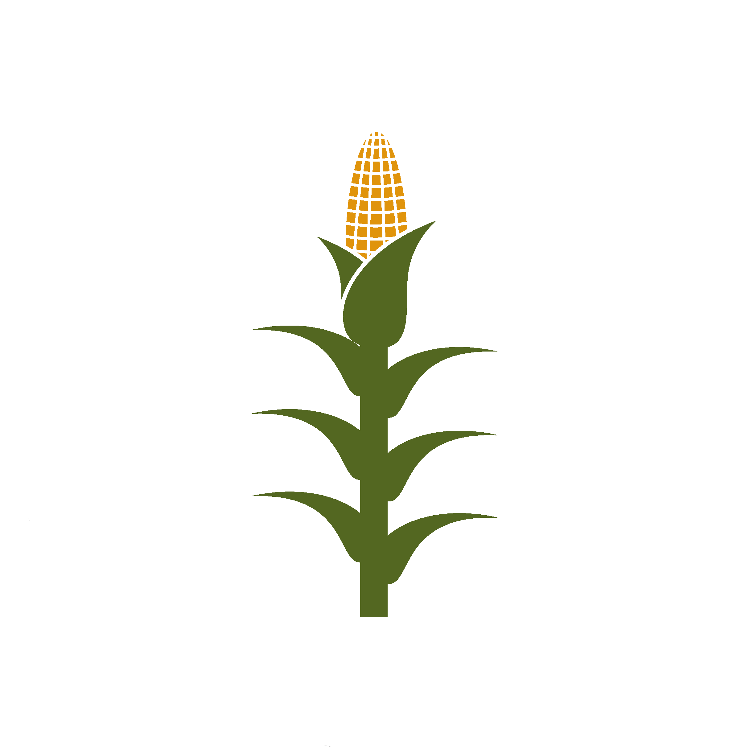 Corn stalk png. Copy crops