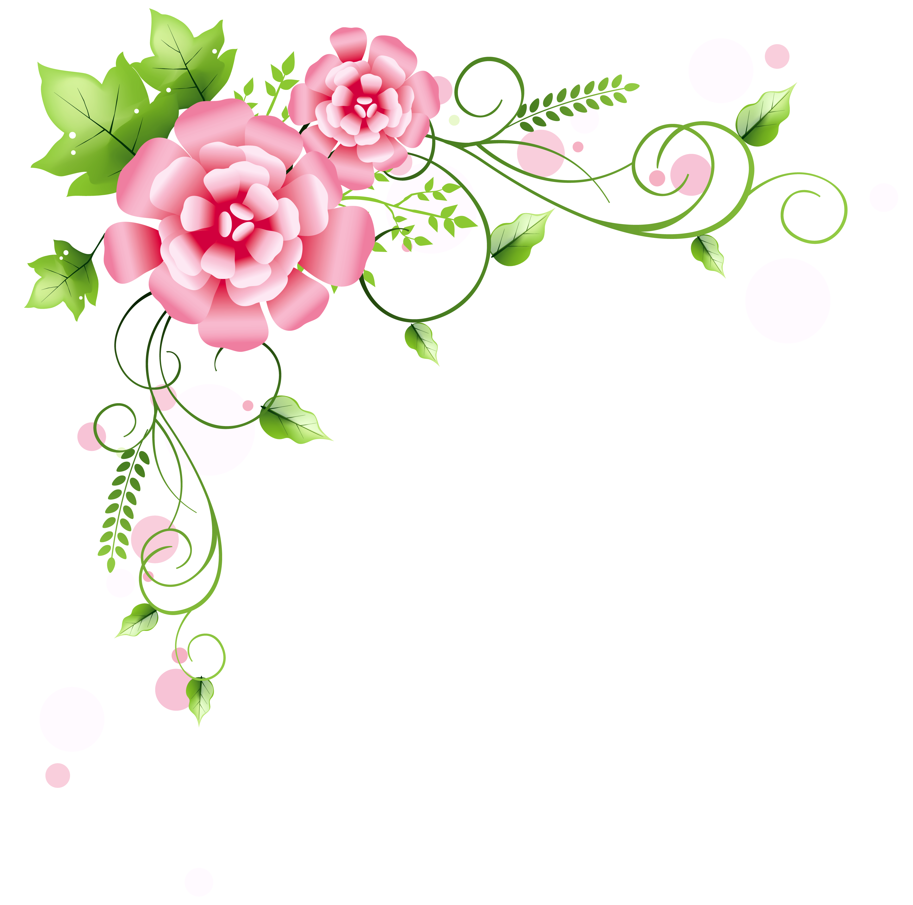 Floral corner png. Decoration clipart picture gallery