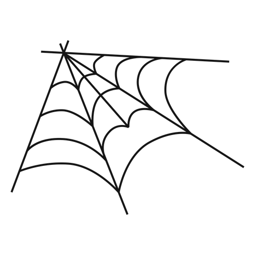 drawing web hand drawn spider
