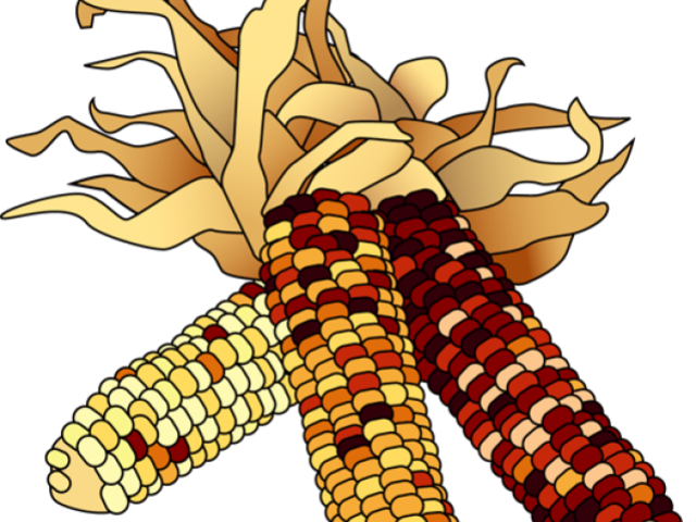 Clipart free on dumielauxepices. Cornfield drawing wheat field royalty free stock