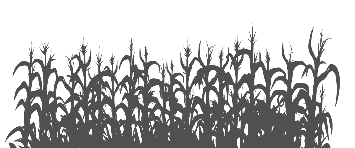 Cornfield vector transparent. How to hide from