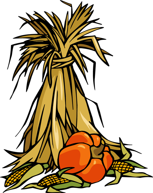 Cornstalk drawing. Colorful clip art for