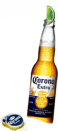Corona transparent lime png. For free download