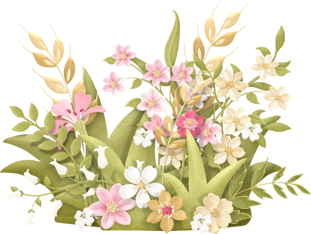 Country flower png. Meadow nitwit collections clipart