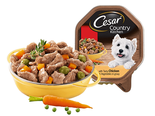 Country food png. Cesar kitchen dog tray