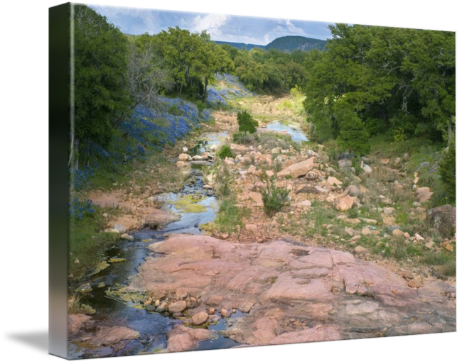 Country landscape png. Texas hill spring by