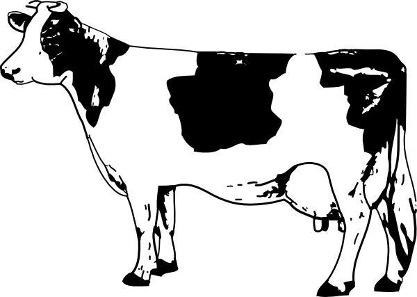 Cow clip art. Free vector in open