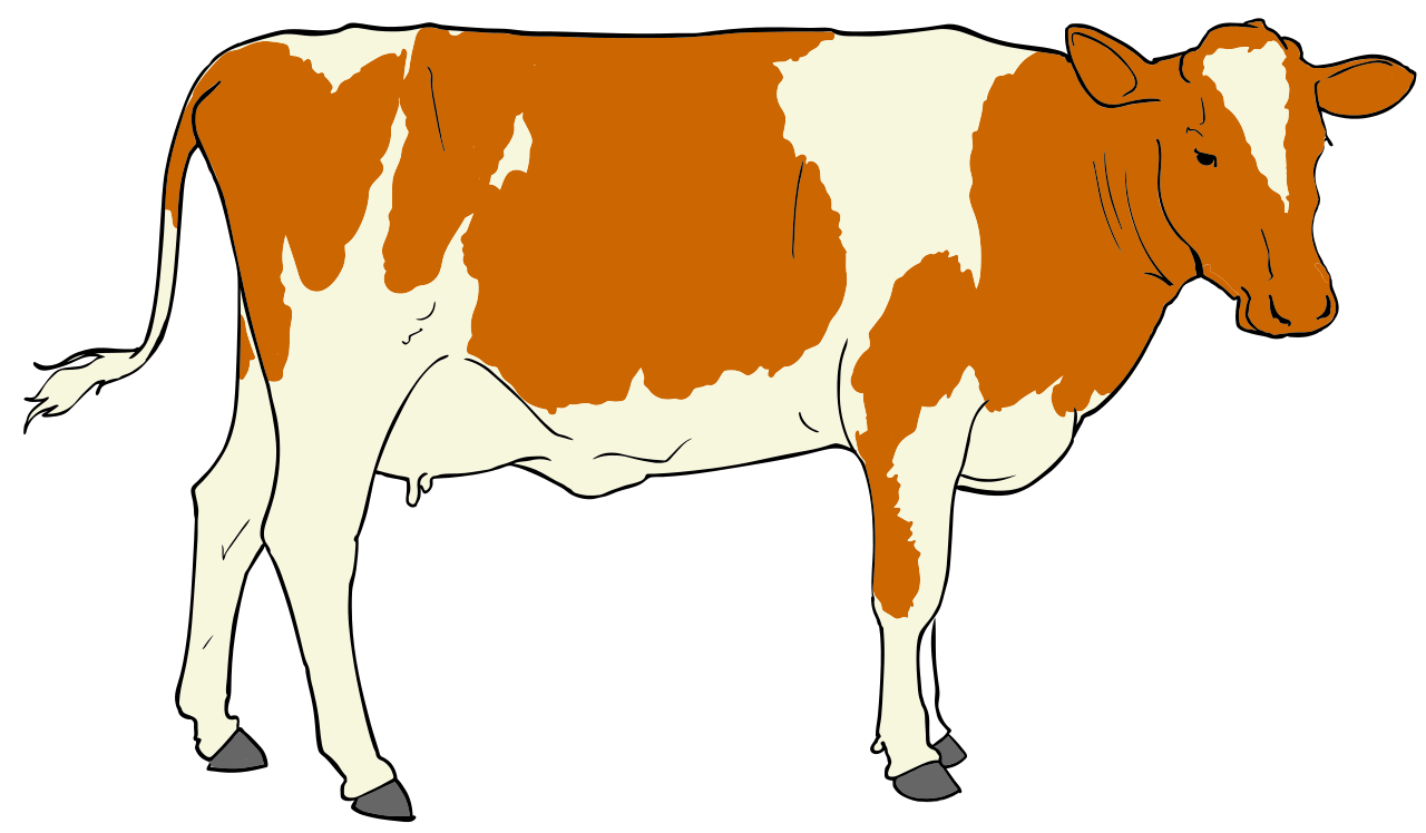 cattle vector svg