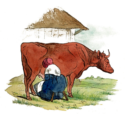 Cow clip art animated. Clipart animations free graphics