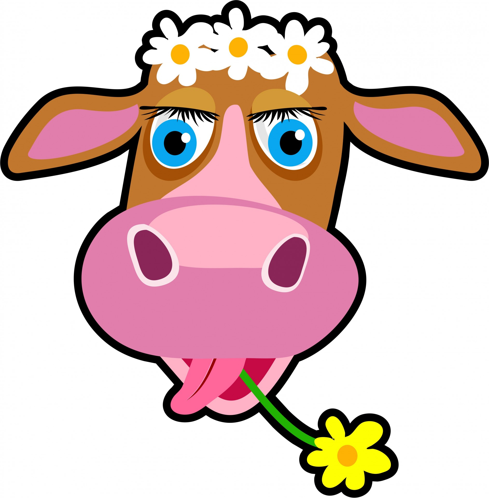Cow clip art cartoon. Clipart free stock photo