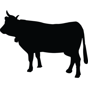 Cow clip art clear background. Show silhouette at getdrawings