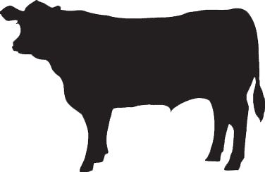 Cow clip art shadow. Holstein silhouette at getdrawings