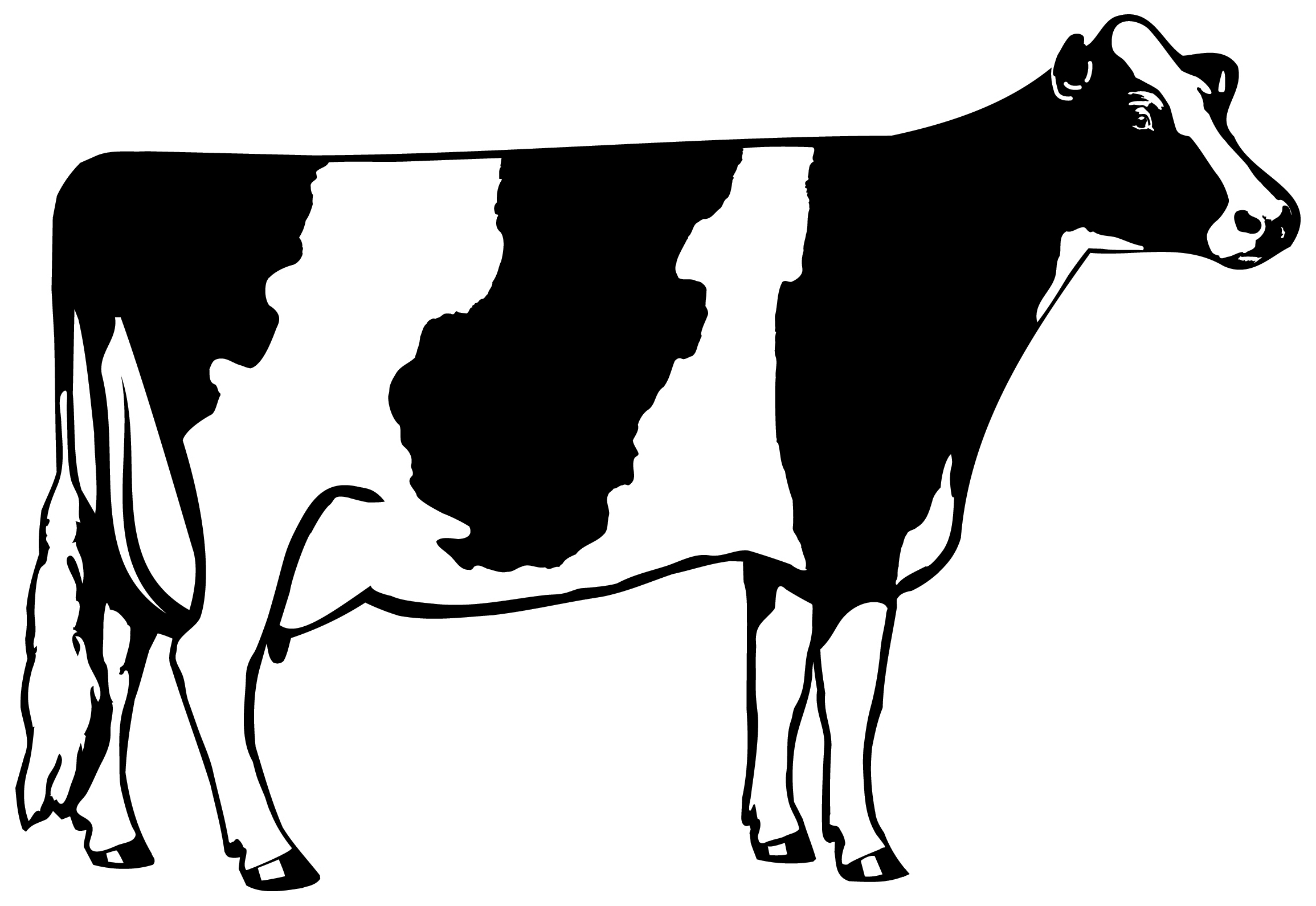 Cow clip art silhouette. Cows at getdrawings com