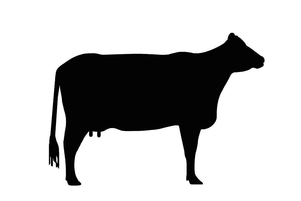 Cow clip art silhouette. Of a at getdrawings