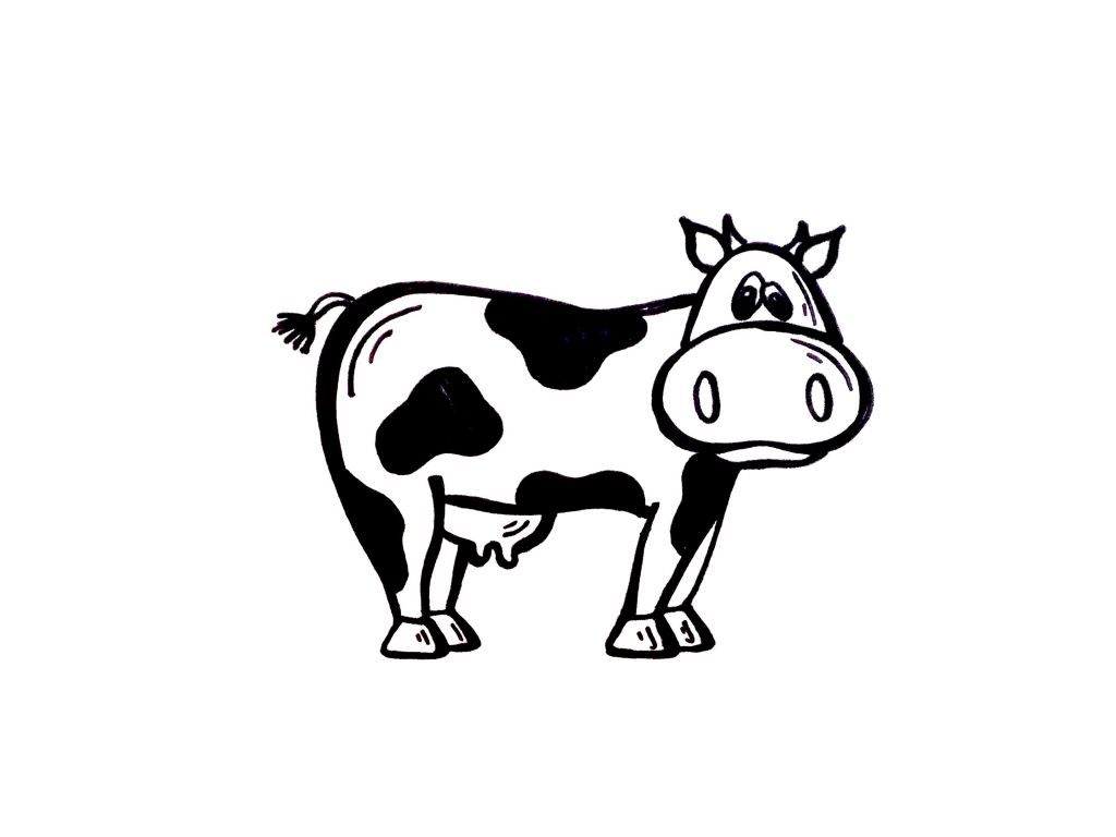 Cow clip art simple. Drawing of a gallery