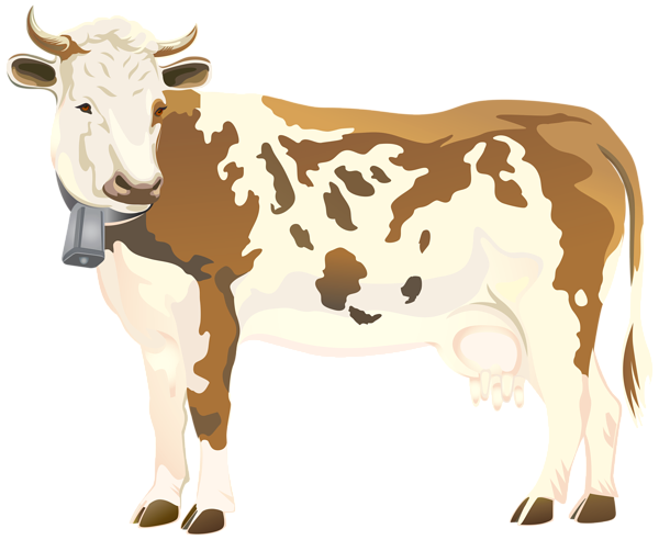 Cow png. Clip art image gallery
