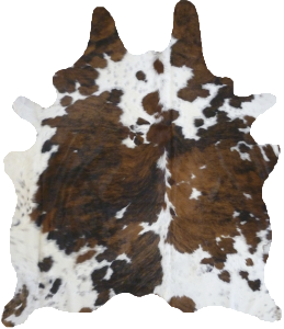 Cow hide rug png. Great source for cowhide