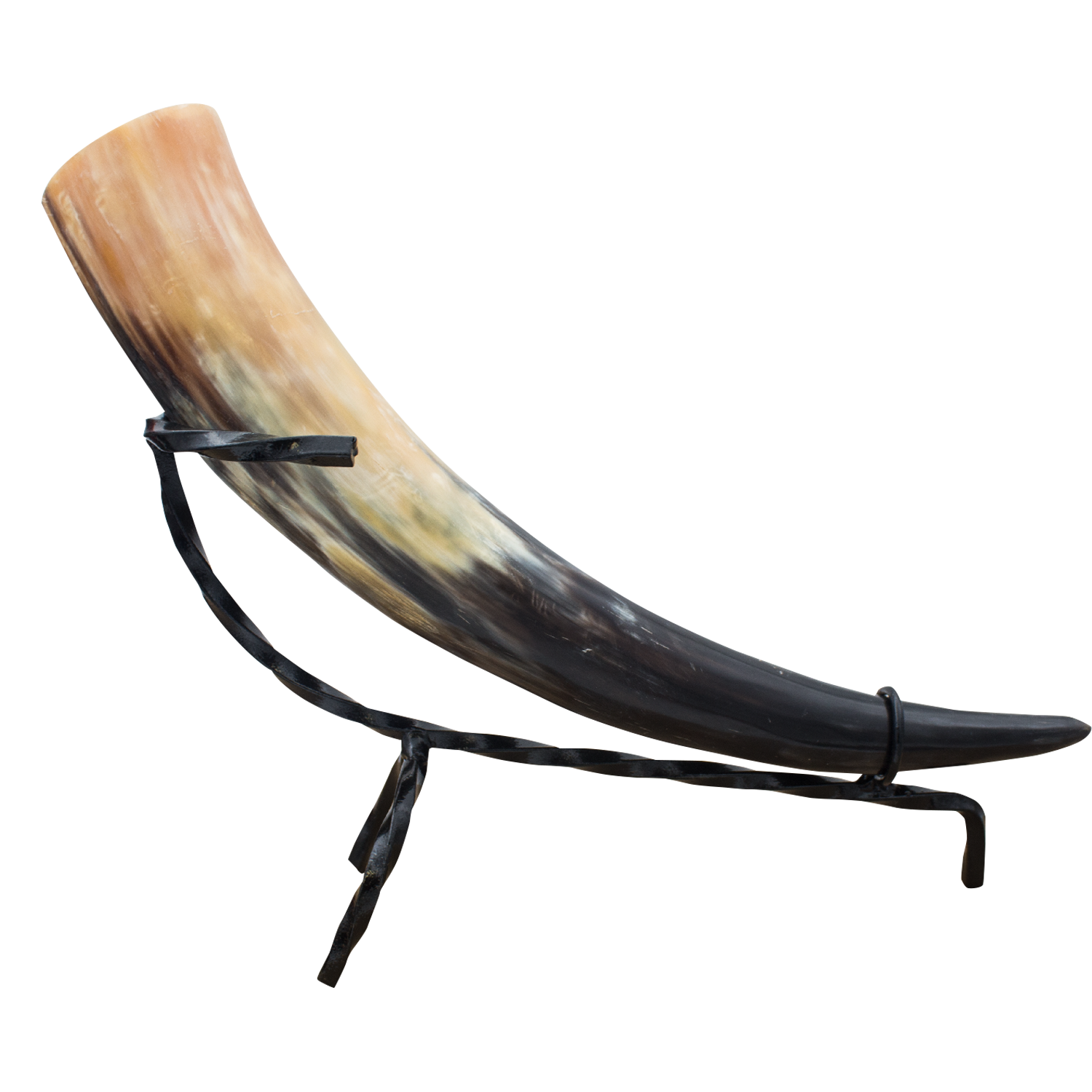 Cow horn png. Medieval animal drinking real
