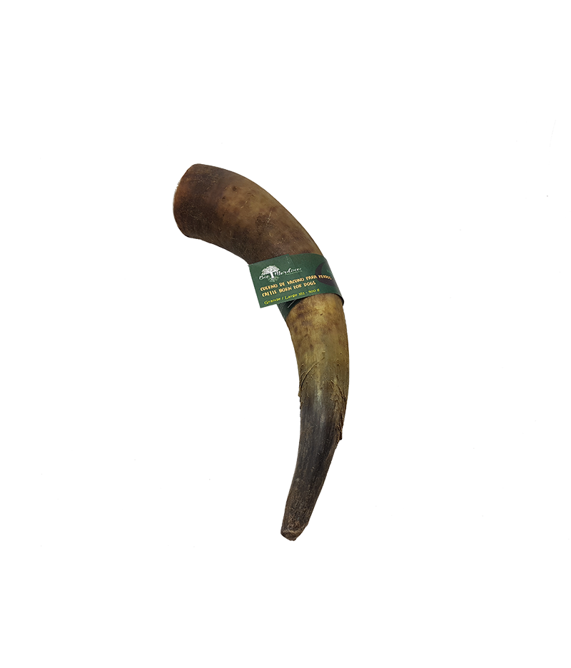 Cow horn png. Cattle for dogs chew