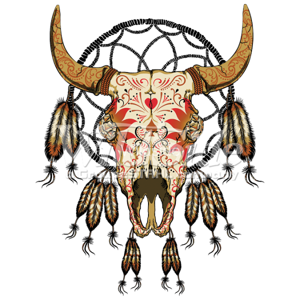 Cow skull png. Southwestern dream catcher the