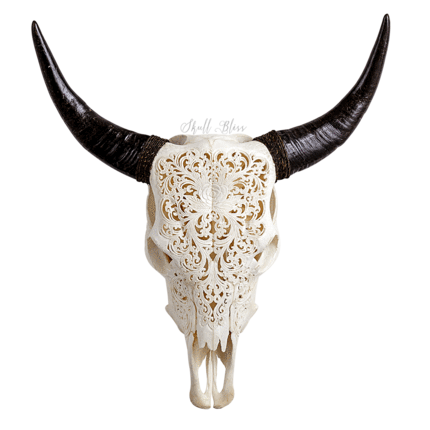Cow skull png. Bliss skulls worldwide delivery