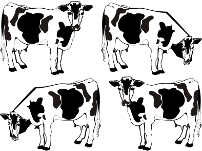 Cow sprite png. Index of images bigcowspritepng