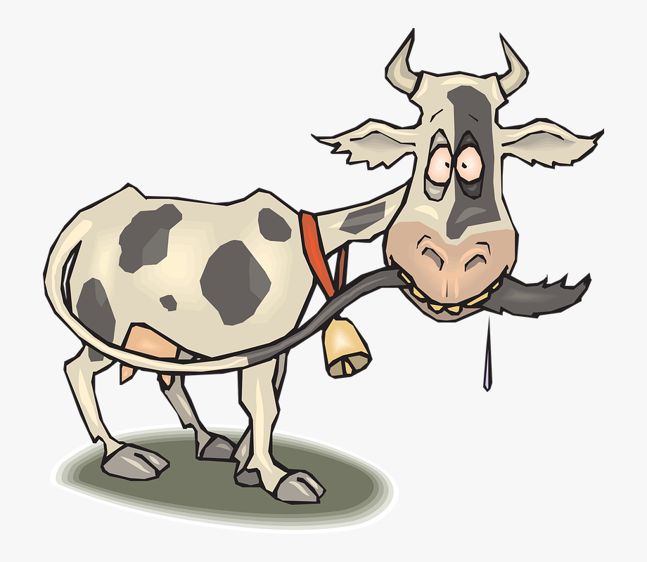 Cow tail. Cattle clipart thin cliparts