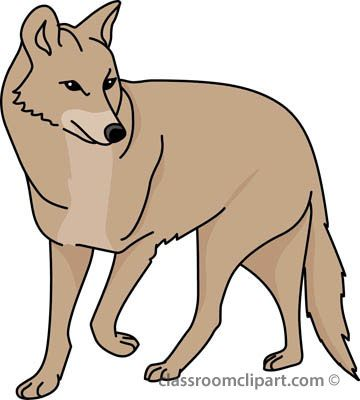coyote clipart simple
