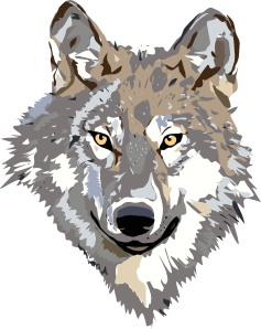 Fur vector scary wolf. Clip art online royalty