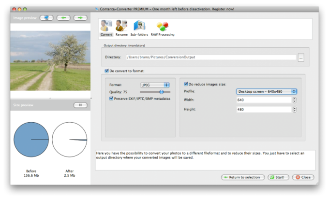 convert cr2 to raw online