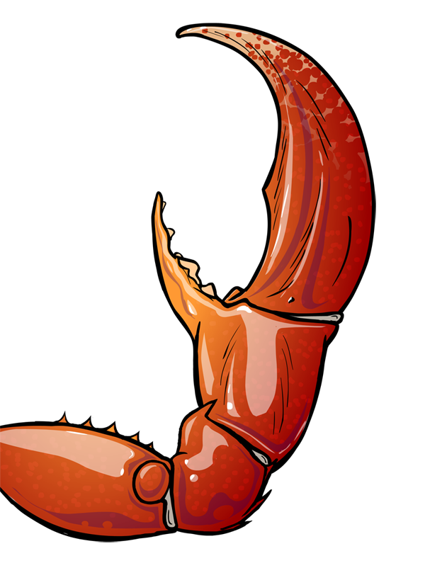 Crab claw png. By mikeroush on deviantart