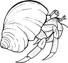 Crab clipart lobster. Hermit black and white