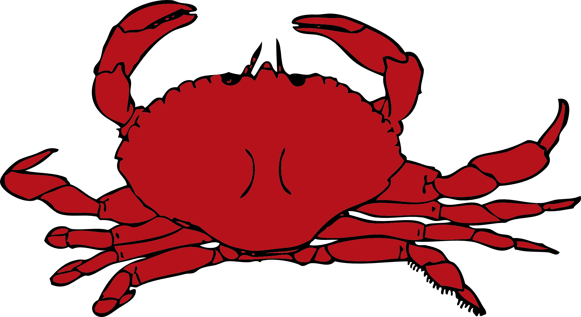 Crab clipart lobster. Crustaceans pencil and in
