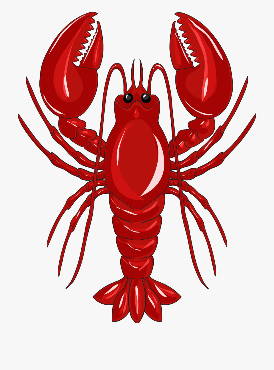 Crab tail. Lobster clip art red
