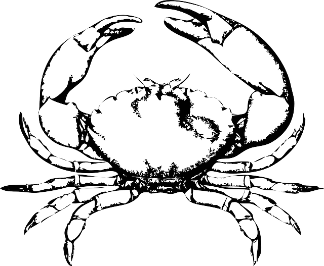 Crabs drawing ink. Free image on pixabay