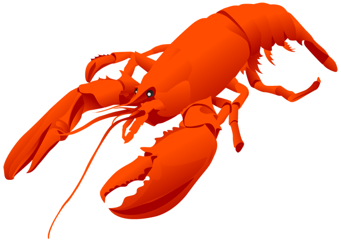 Crab clipart lobster. Crayfish pencil and in