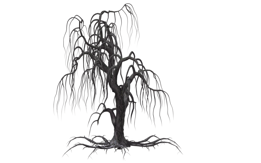 Creepy vines png. Collection of drawing