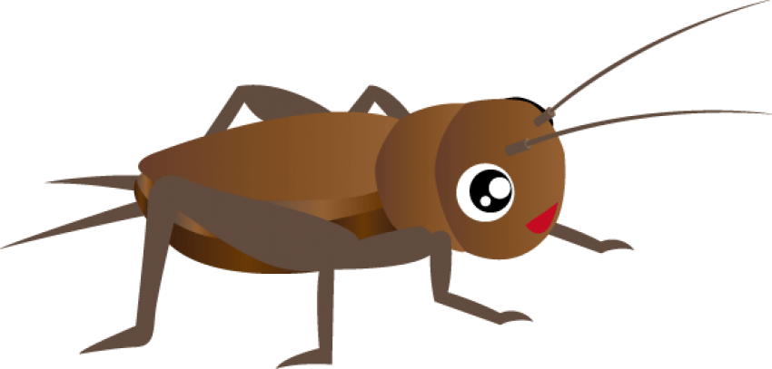 Cricket clipart. Download insect png images