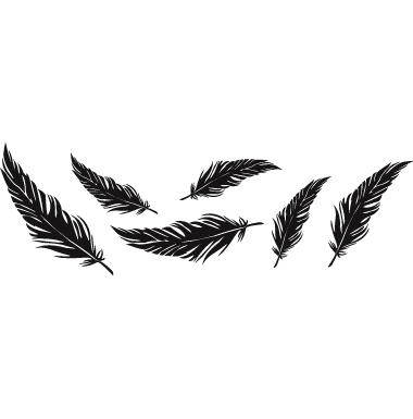Crow feather png. Feathers by darkblot on