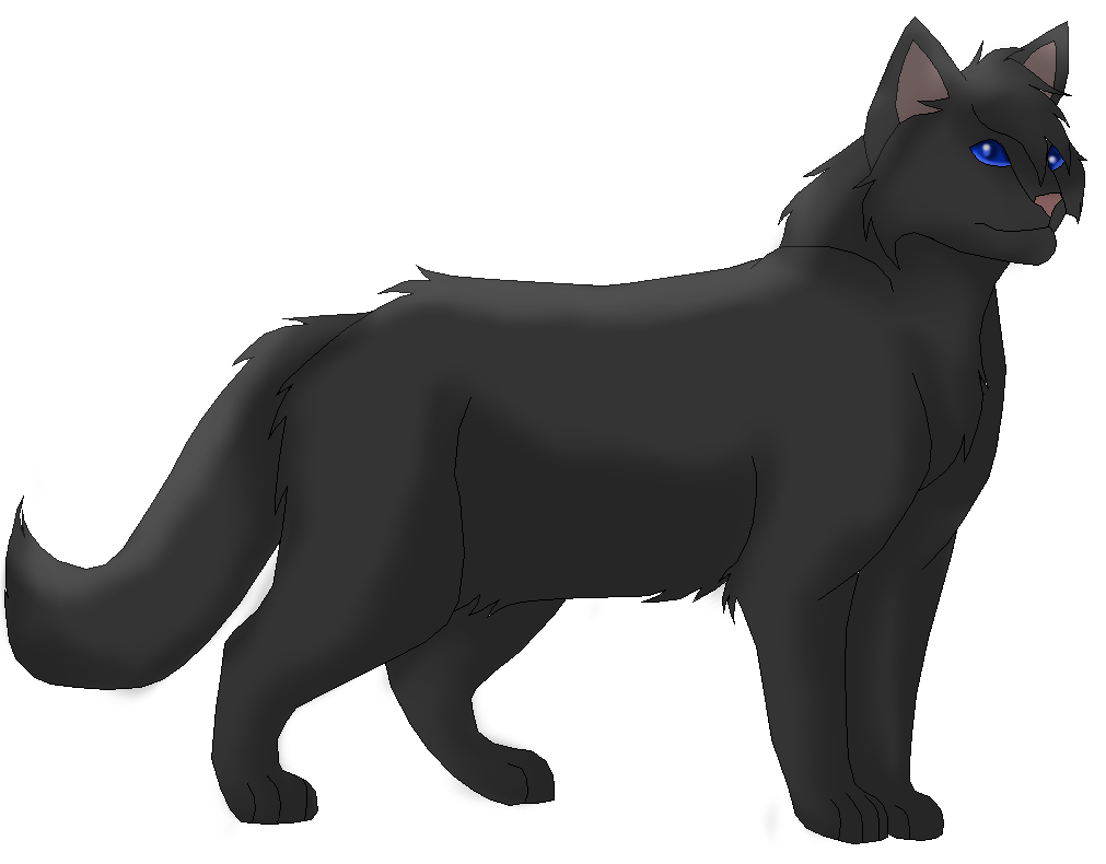 Crow feather png. Crowfeather by acazialioness on