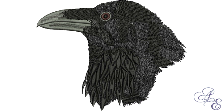 Crow head png. Raven large art of