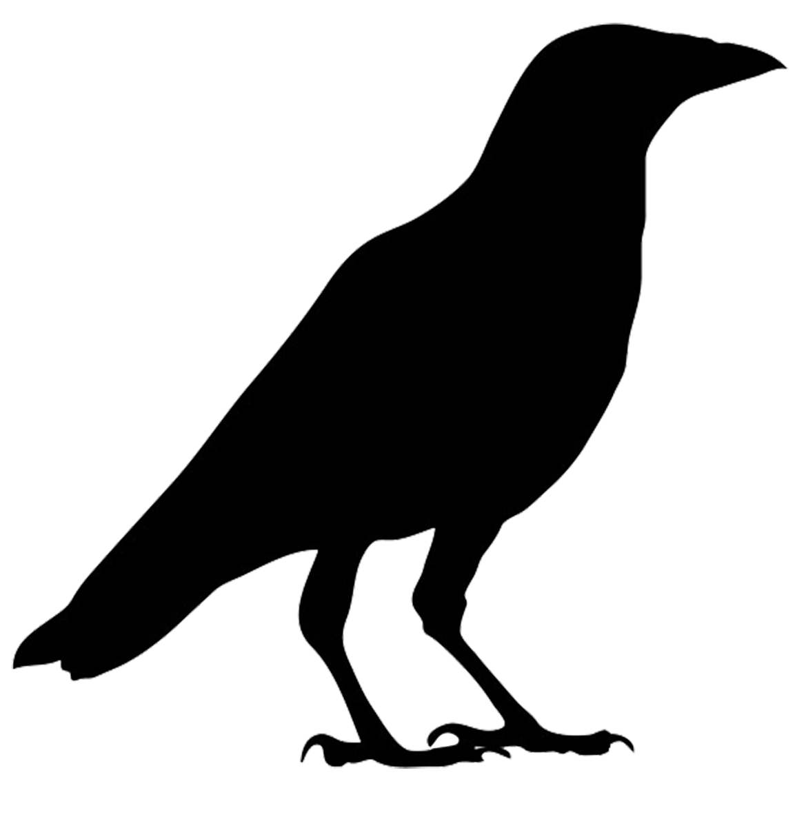 Crow silhouette png. Bird silhouettes
