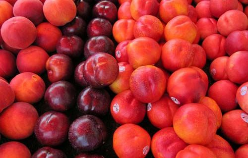 Crumpled nectarine. A delicious collection of