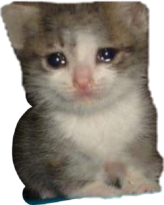Crying cat png. Meme kitty cute dank